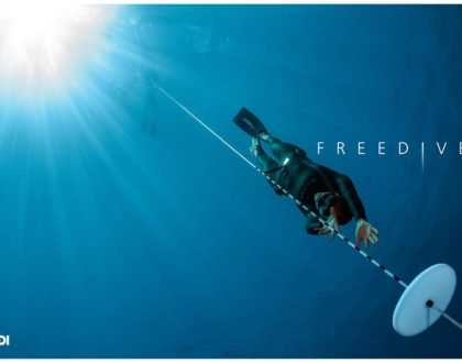Padi freediver course
